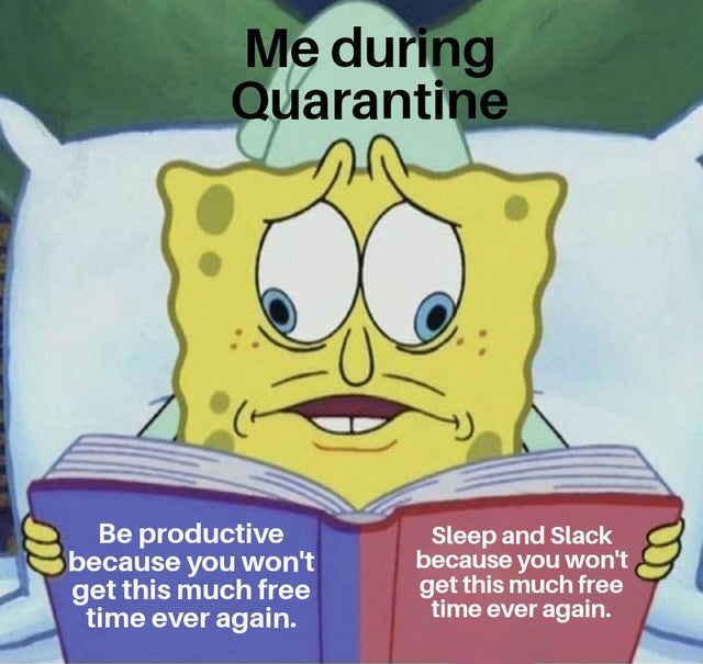 me-during-quarantine-meme